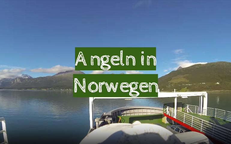 Angeln in Norwegen: Tipps der erfahrenen Fischer.