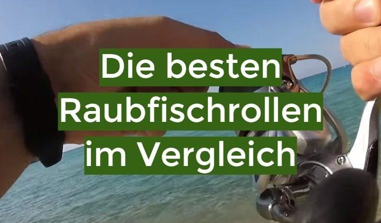 Raubfischrollen Test 2019: Die besten 5 Raubfischrollen im Vergleich