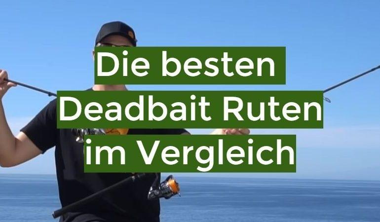 Deadbait Rute Test 2019: Die besten 10 Deadbait Ruten im Vergleich