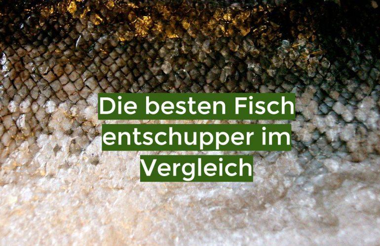 Fischentschupper Test 2021: Die besten 5 Fischentschupper im Vergleich
